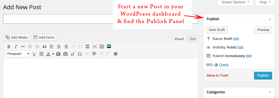 start a new post in WordPress and find the publish panel