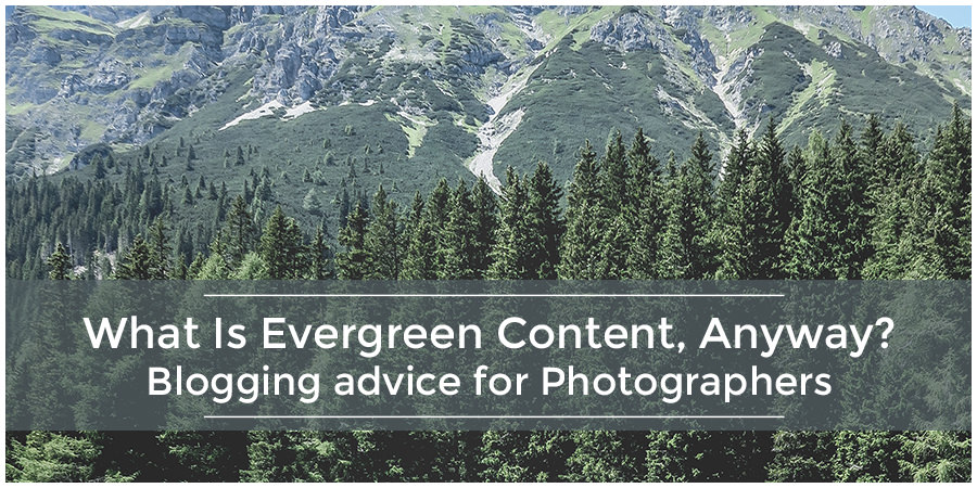 What Is Evergreen Content, Anyway? | Blogging advice for Photographers